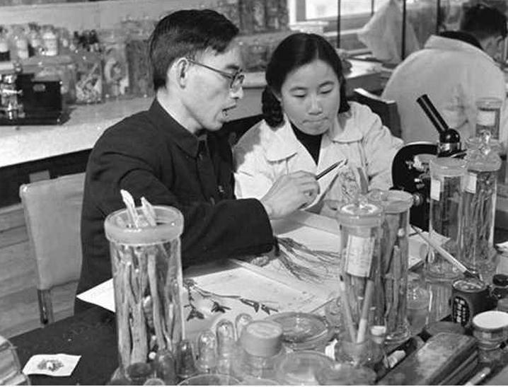 Chinese nobel Prize-winning scientist Tu Youyou (屠呦呦, right) and tutor Lou Zhicen at the China Academy of Chinese Medical Sciences. Source: Xinhua, undated (1950s).