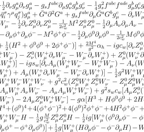 Lagrangian of the Standard Model of Particle Physics,