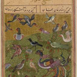 A page from ms. Oxford Bodleian Library, Ms. Elliott 246, fol. 25v, dated 1493, of Farīd al-Dīn ʿAṭṭār, The Conference of the Birds (Manṭiq al-ṭayr).
